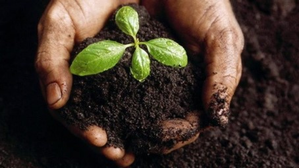 Difendere il suolo per difendere l'agricoltura nazionale