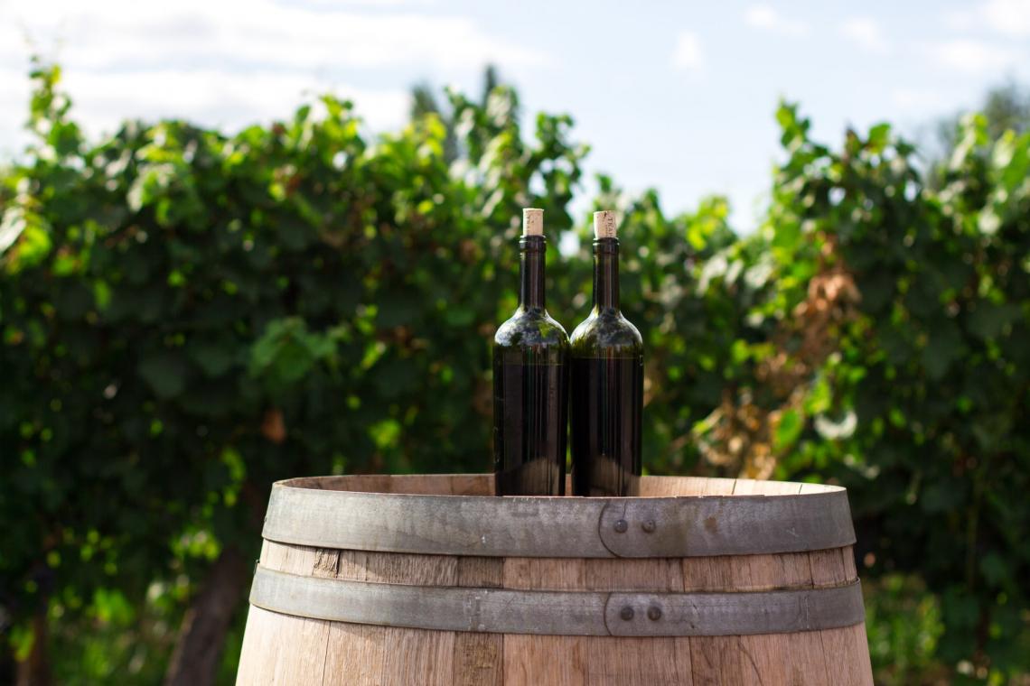 Il miglioramento degli attributi sensoriali del vino rosso grazie all'aerazione durante la fermentazione