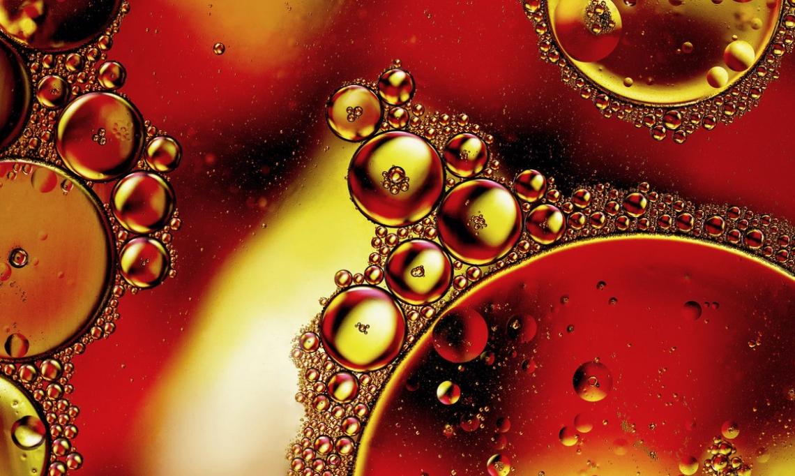 Il determinante contributo dell'olio extra vergine di oliva di Coratina nelle miscele internazionali