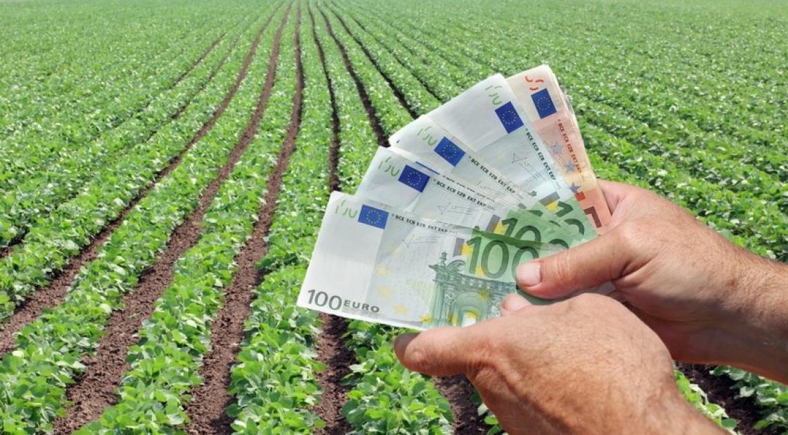 Il Piano nazionale di ripresa e resilienza vede protagonisti agricoltura e digitalizzazione
