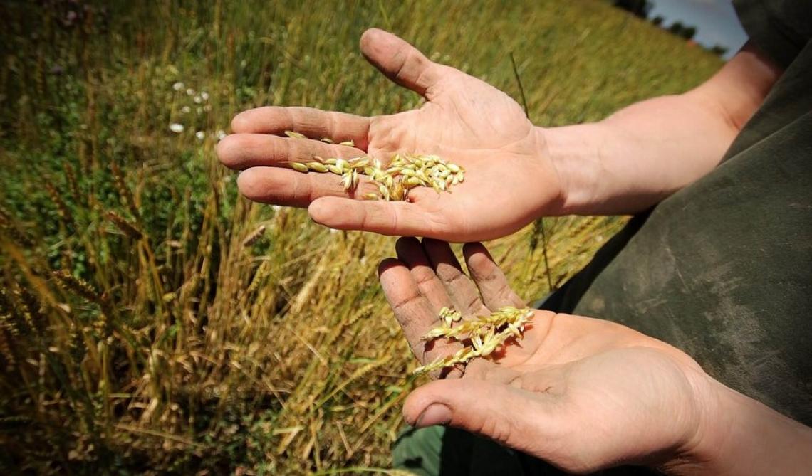 Occorre il riconoscimento della figura di agricoltore custode dell'ambiente e del territorio