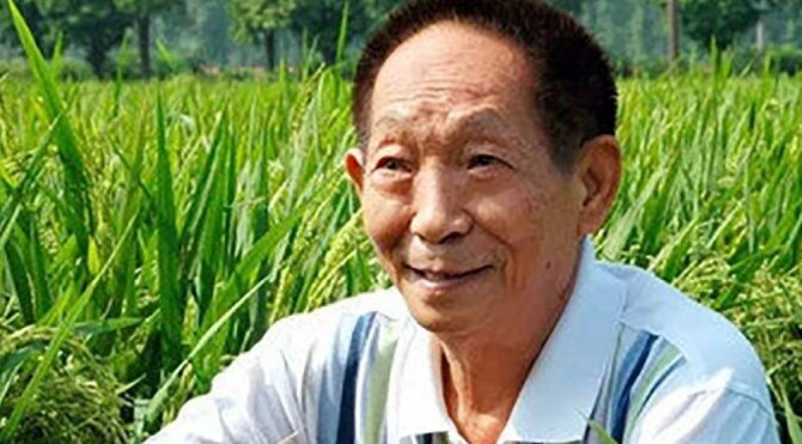 Yuan Longping, un ricordo dell'agronomo che sfamò la Cina