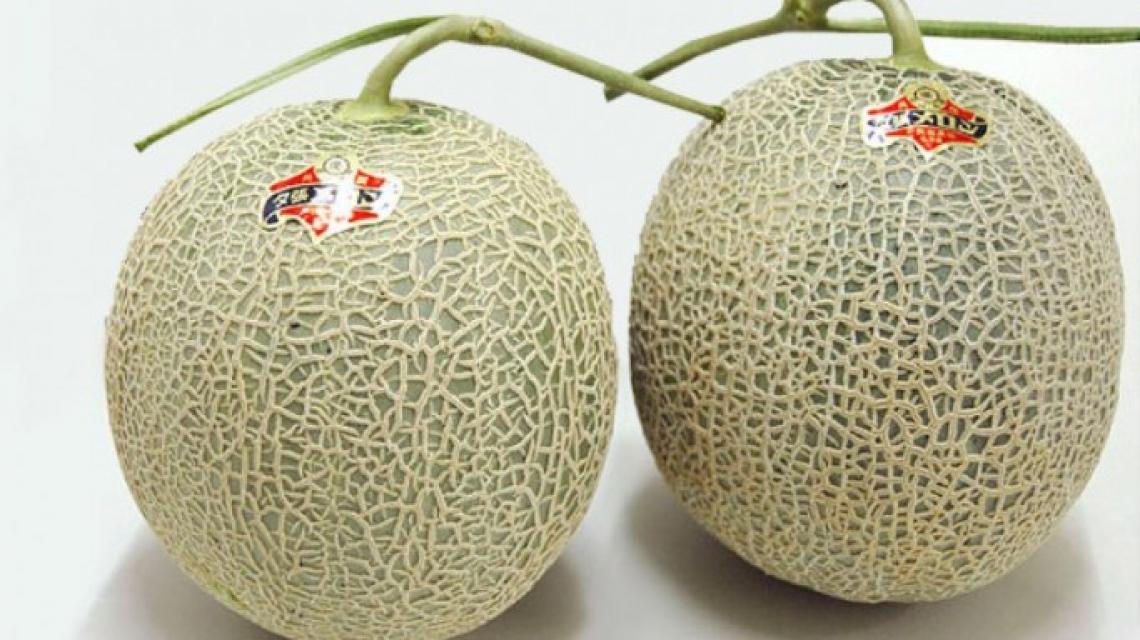 E' record in Giappone: due meloni venduti all'asta per oltre 20mila euro