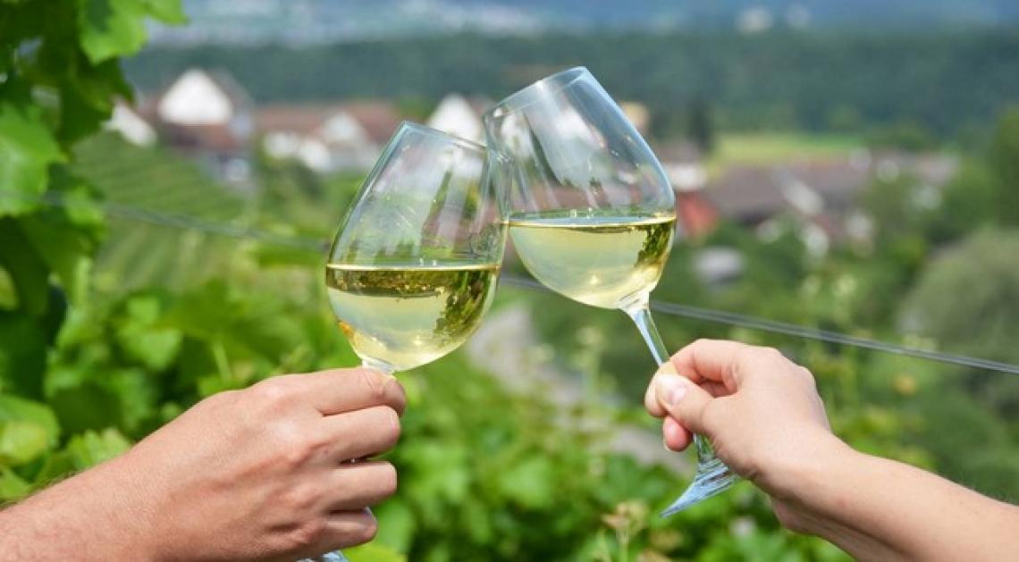 Le Marche sostengono il settore vitivinicolo con 2 milioni di euro