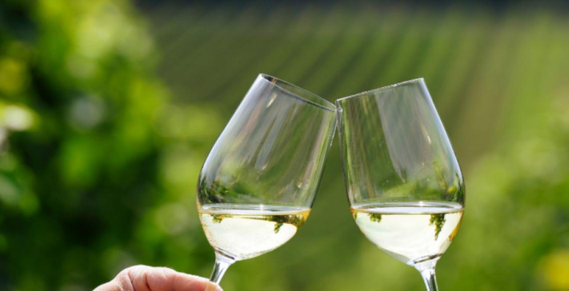 Al via Cantine Aperte 2021. Grande attesa per l'evento più amato dai winelover