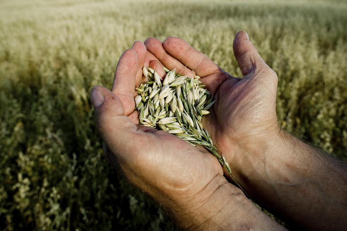 Green pass deve salvare agricoltura, non solo turismo