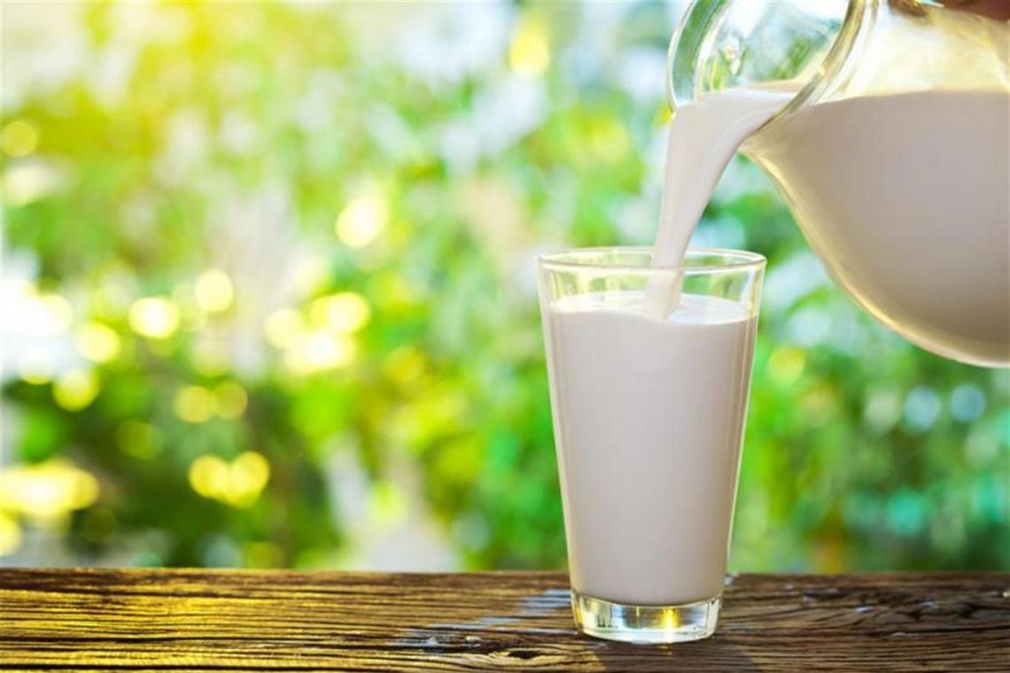 World Milk Day: torna il cappuccino al banco del bar