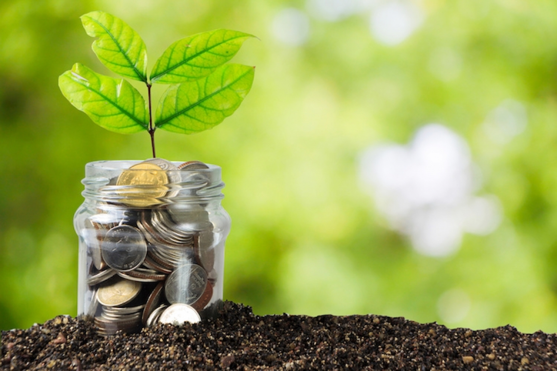 Il rimbalzo del PIL agricolo nel 2021