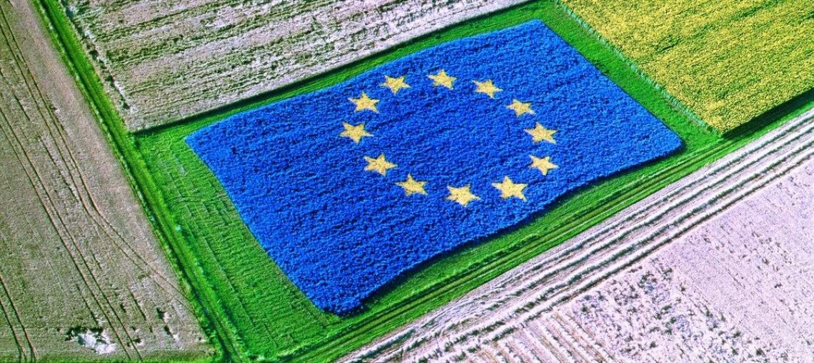 Appello delle associazioni del biologico italiano: serve subito la legge sul bio