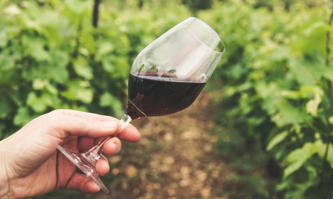 Il mercato del vino nel primo trimestre 2021:  grande crescita in Ucraina, Corea del Sud e Norvegia