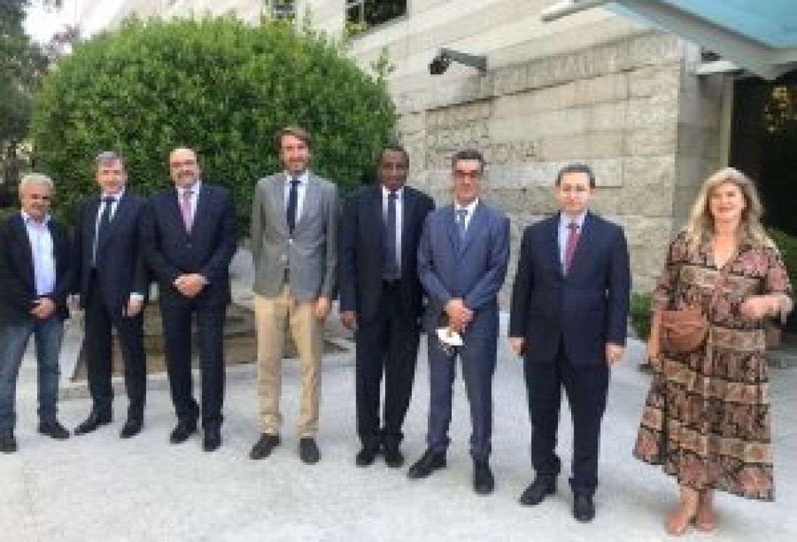Il Consiglio oleicolo internazionale parla sempre più arabo