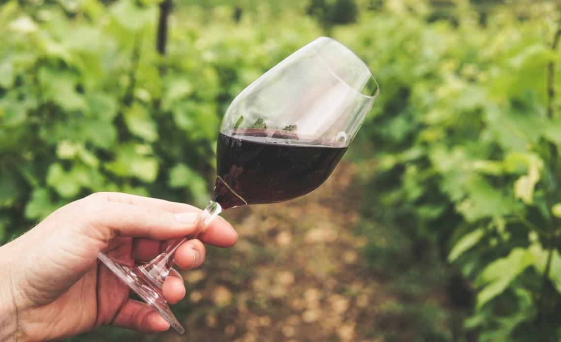 Ghost wine: vini sofisticati per oltre 500mila euro