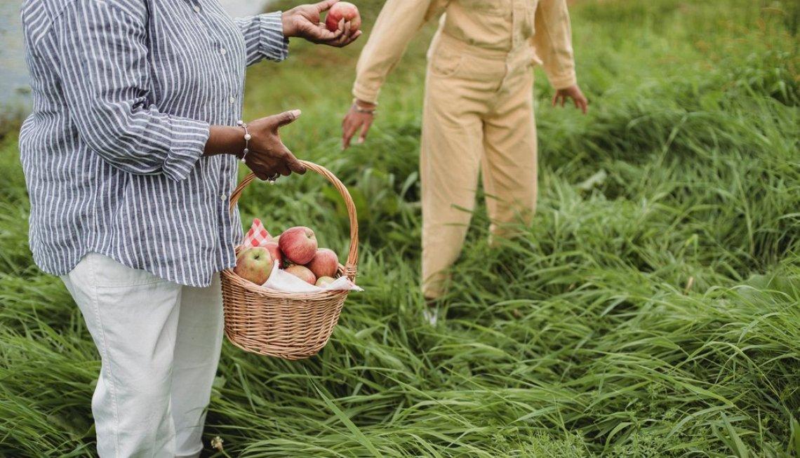Creare la figura dell'agricoltore custode dell'ambiente e del territorio