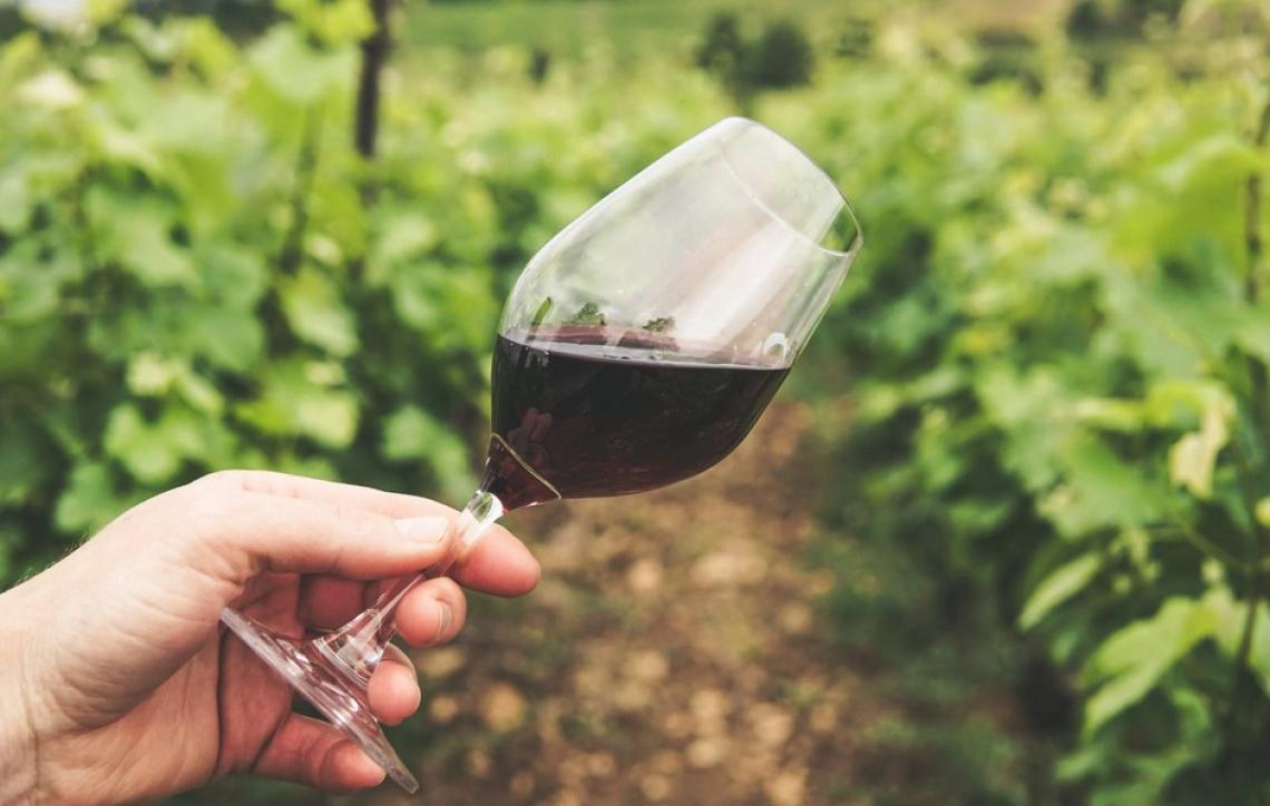 838 vini e distillati in concorso da tutto il mondo in Valle d'Aosta