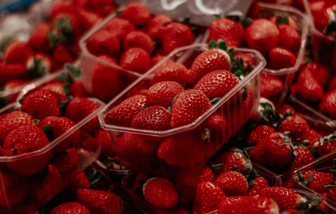 Quali sono le migliori fragole da coltivare in luoghi caldi