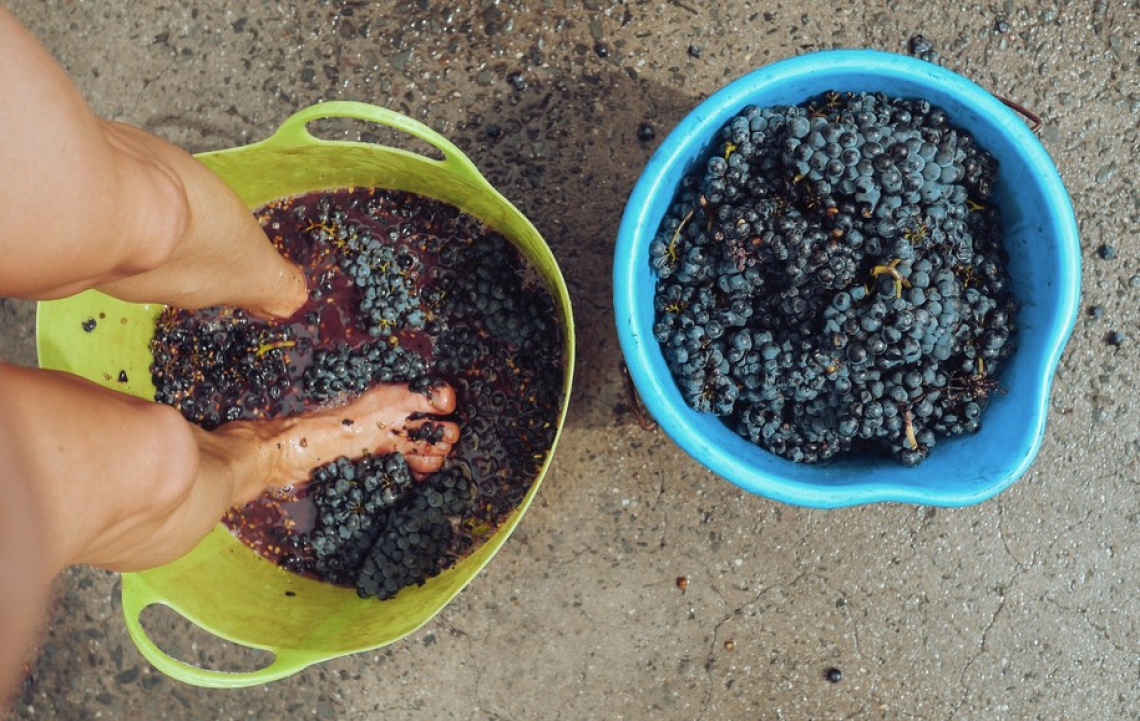 Vino e bevande alcoliche prodotte a partire da alcol denaturato, igienizzanti e disinfettanti