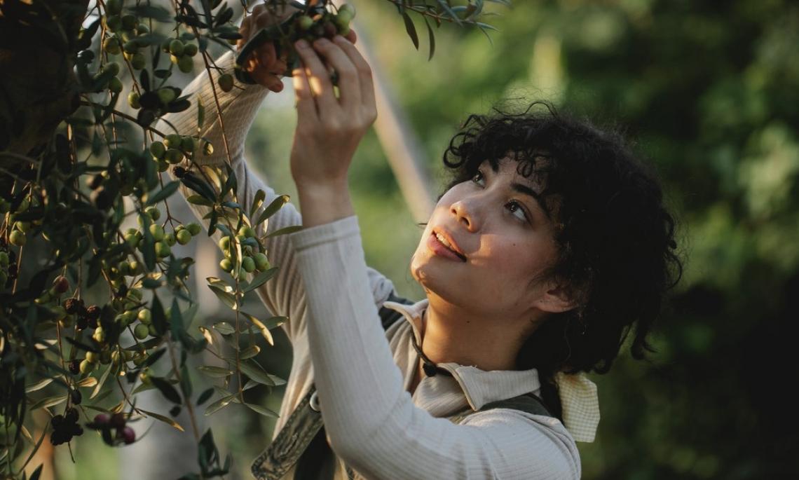 Cresce senza sosta l'imprenditoria femminile in olivicoltura