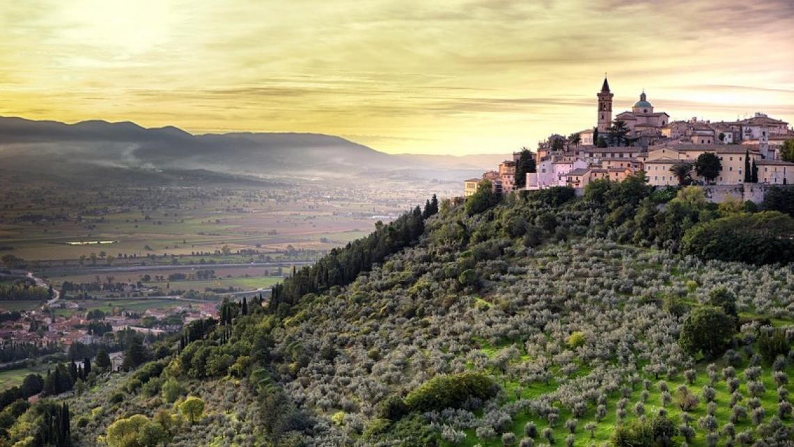 Candidatura Unesco per la Fascia Olivata Assisi-Speleto