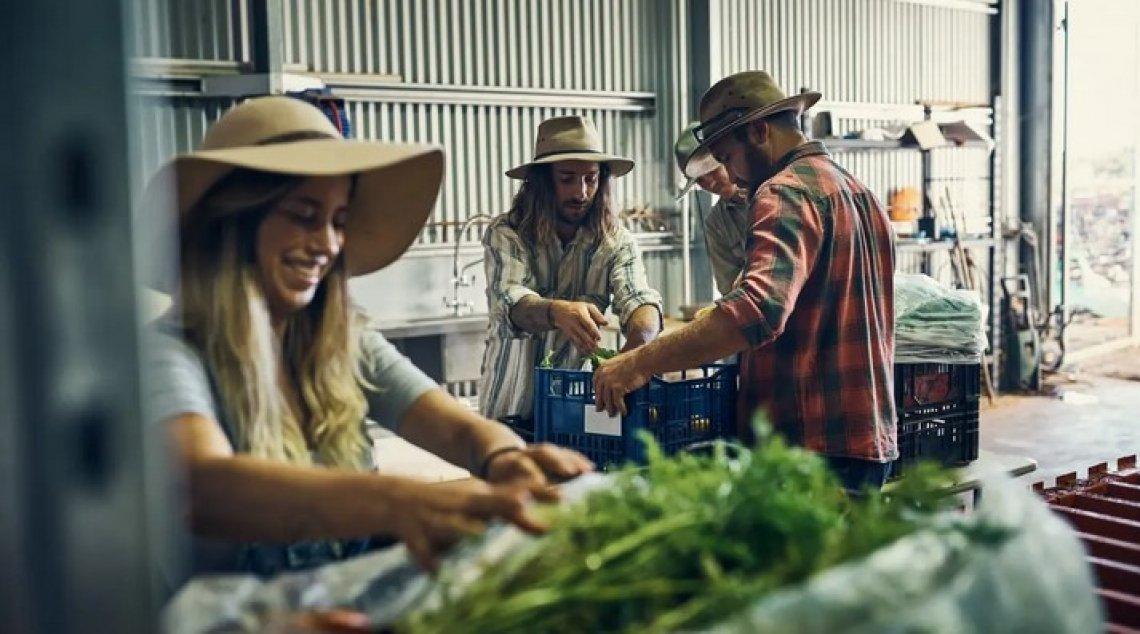 Dalla Op Oliveti Terra di Bari ai soci: il successo della Cooperativa Agricoltura Progresso