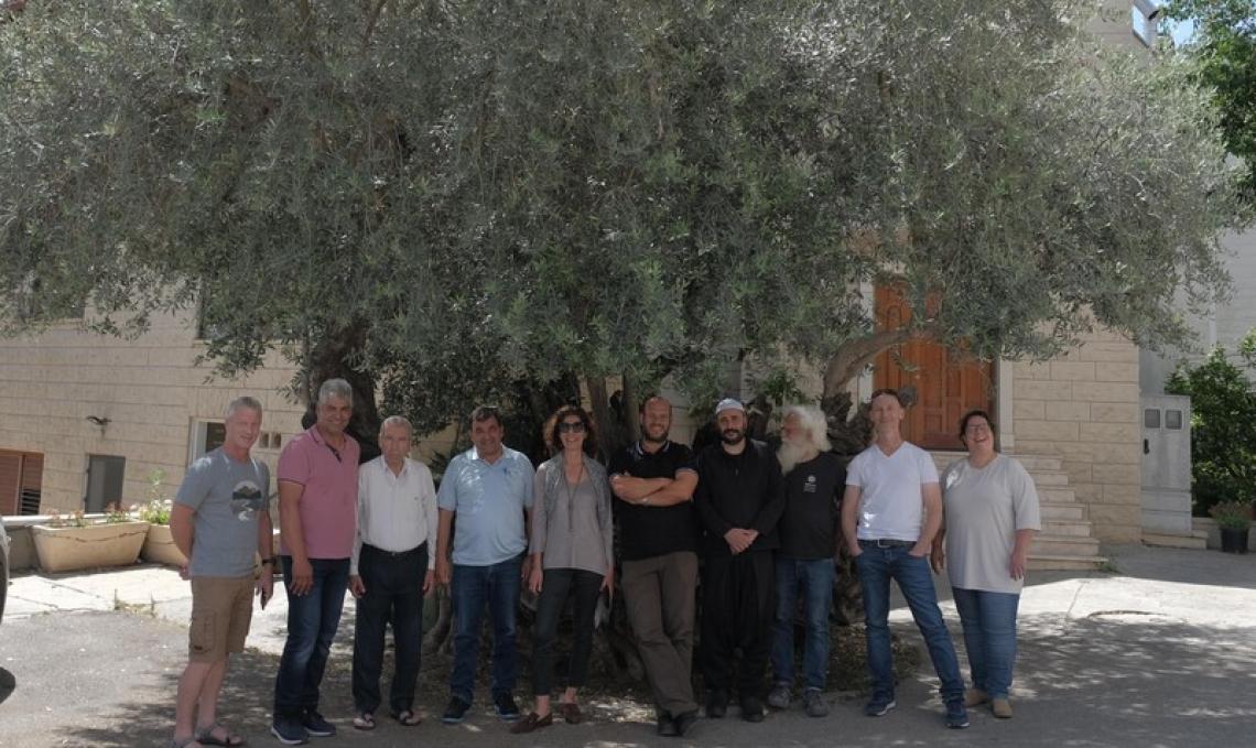 Olivicoltori israeliani e palestinesi insieme nel nome dell'olio d'oliva