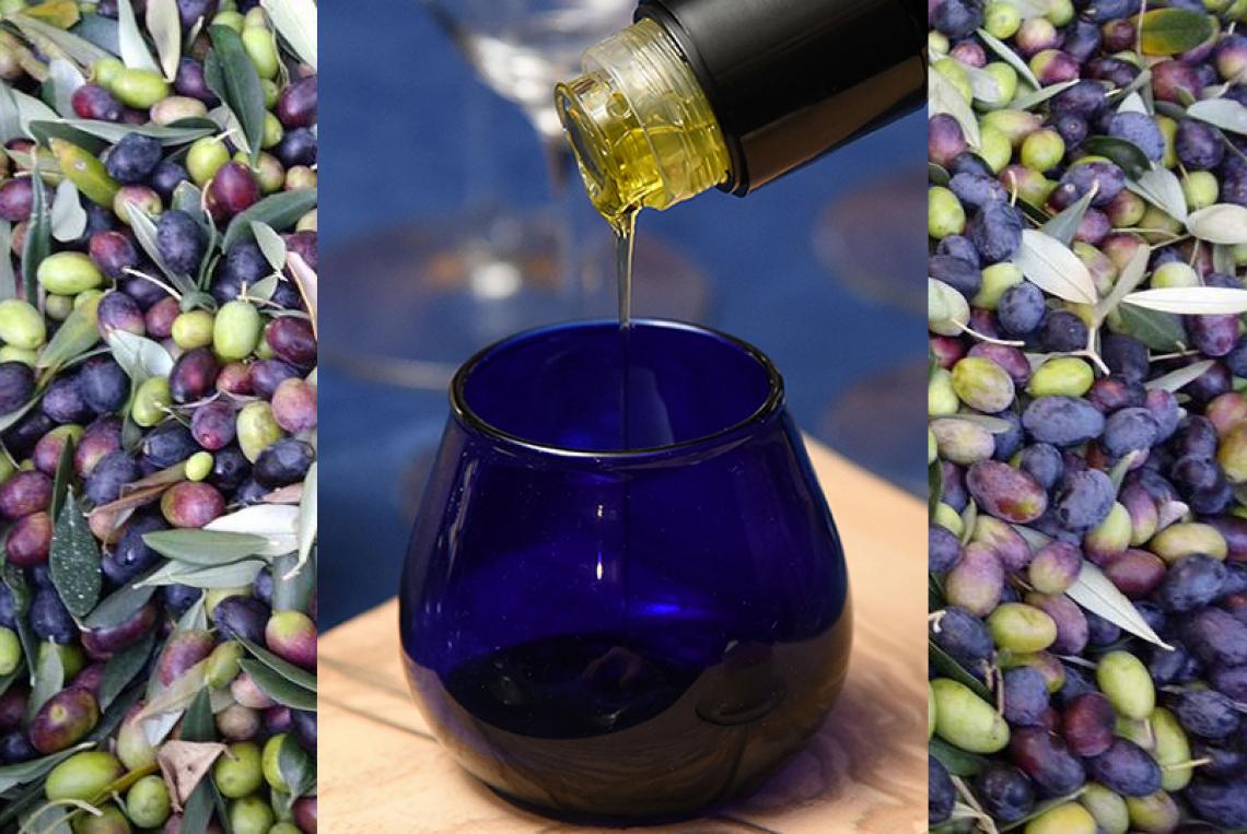 Unaprol presenta l'olio extra vergine di oliva italiano alla Rinascente