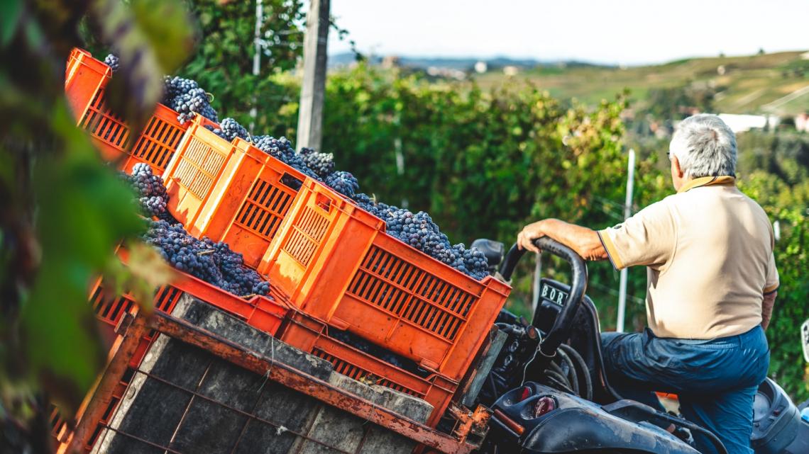 Le cinque proposte degli agronomi italiani per il pianeta