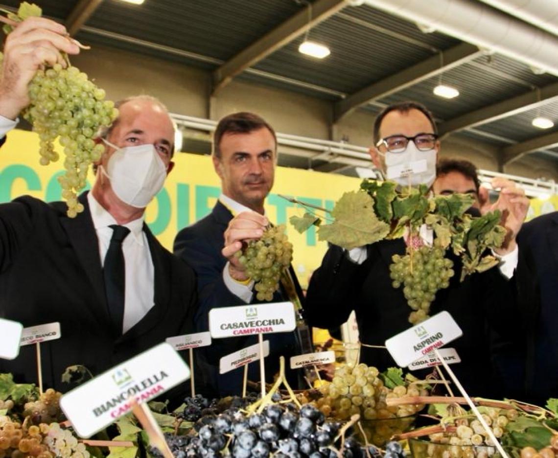 Gli italiani premiano anche negli acquisti di vino le produzioni legate al territorio