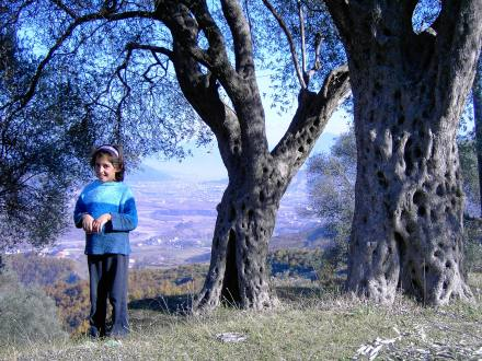 Varosh, foto di Jasna Pangerc