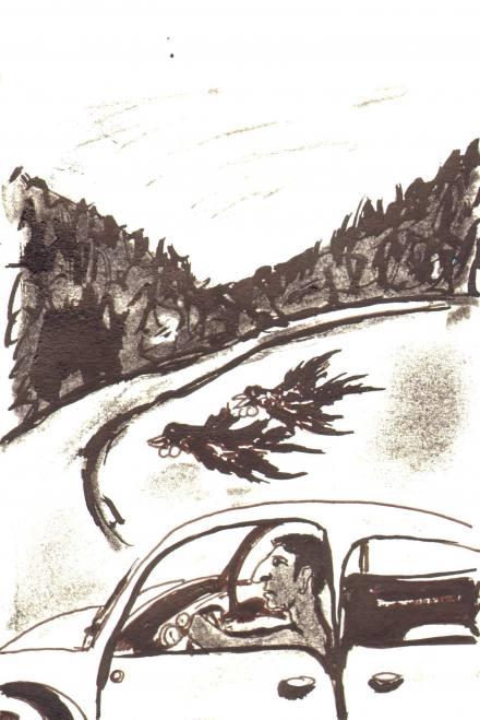 Disegno di Luigi Mariani
