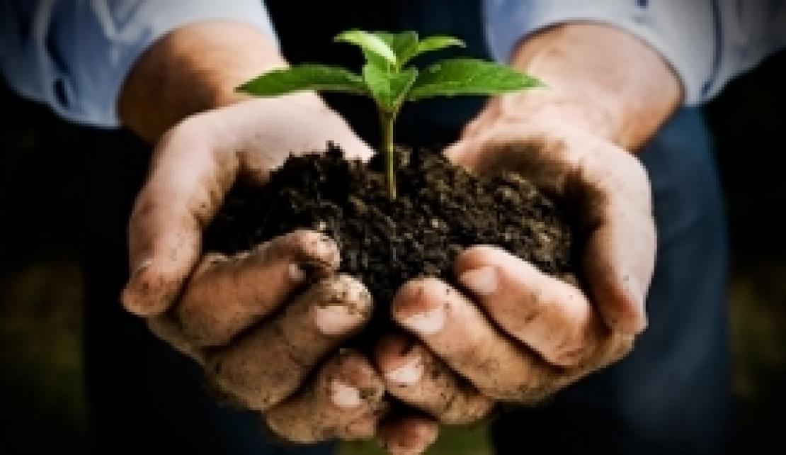 Un contadino è un tronco d'albero che può spostarsi