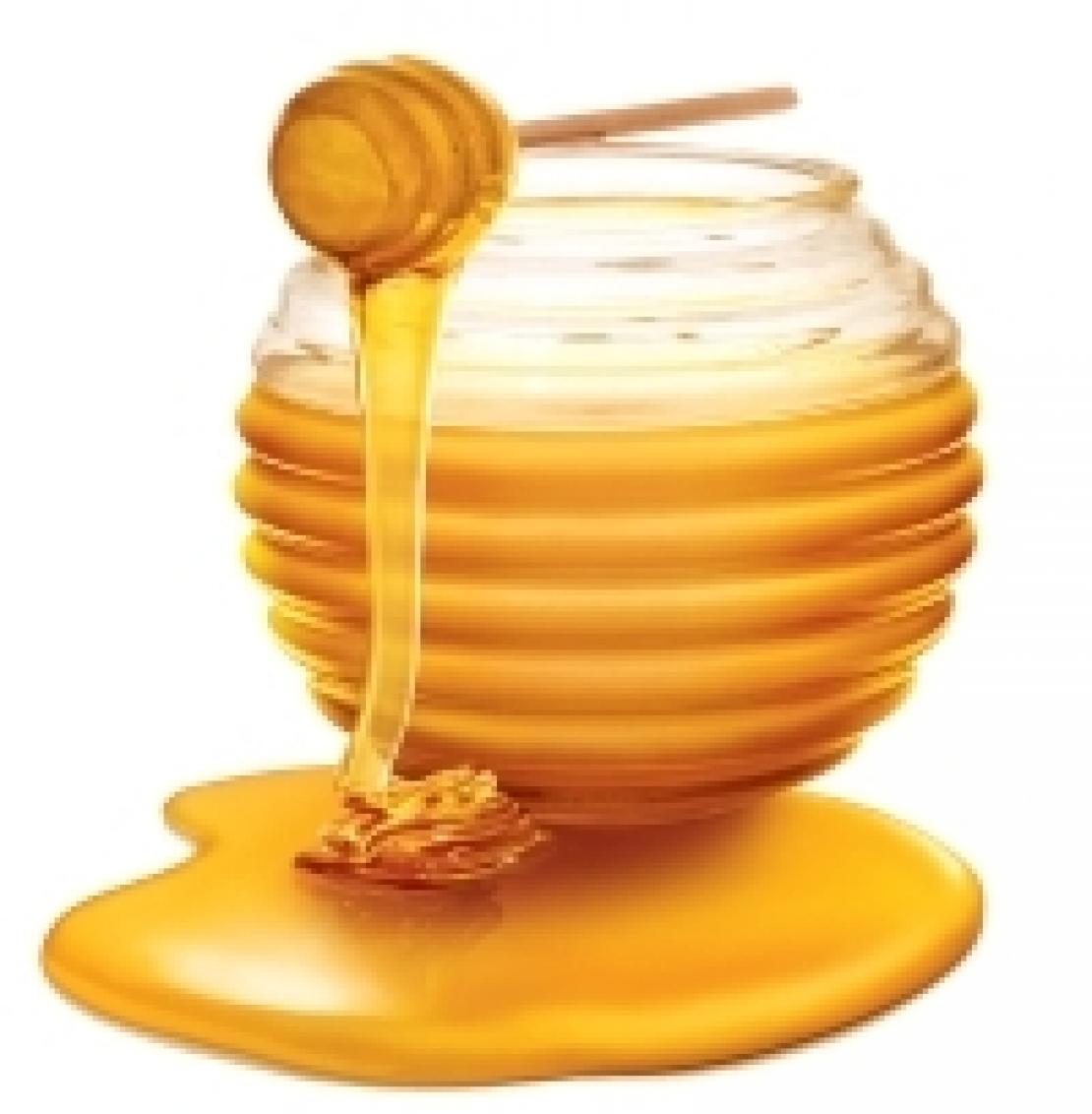 Il miele non va solo mangiato, va degustato
