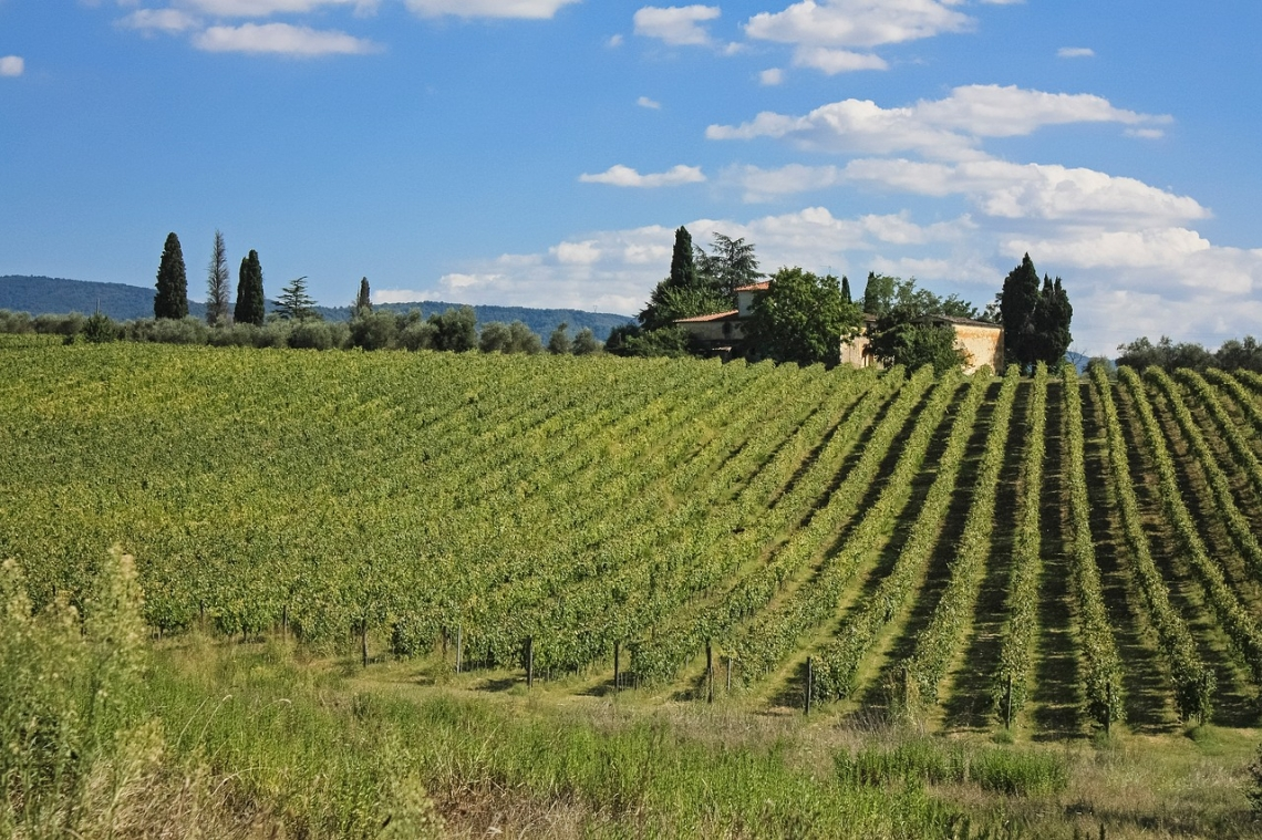 BuyWine e Anteprime di Toscana, al via le due grandi vetrine del vino toscano