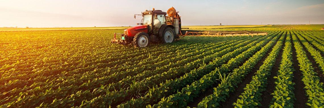 Gli agronomi italiani vogliono la semplificazione del comparto