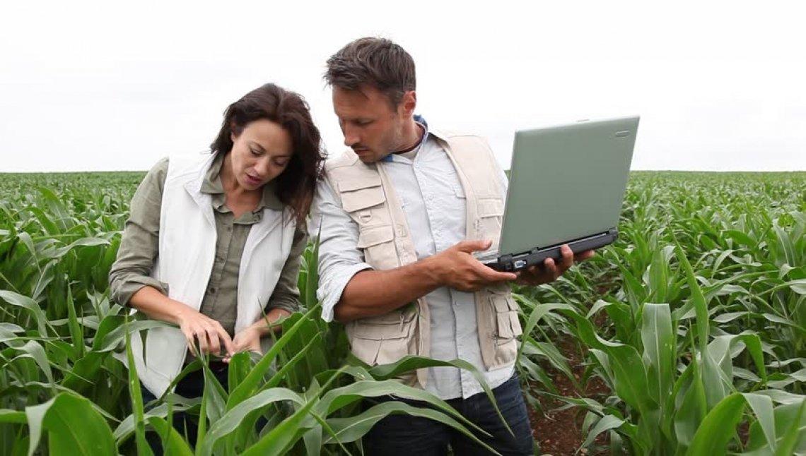 I veri redditi professionali di Periti Agrari e Agrotecnici, oltre le apparenze