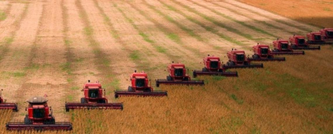 Aree agricole intensive più colpite dal Covid-19