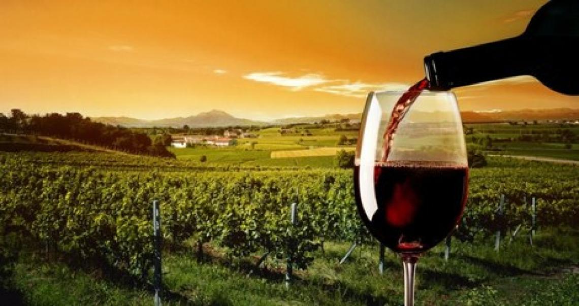 Il vino siciliano in flessione ma tiene