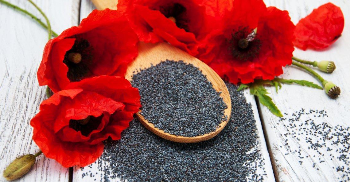 Positivi al test antidroga per colpa dei semi di papavero