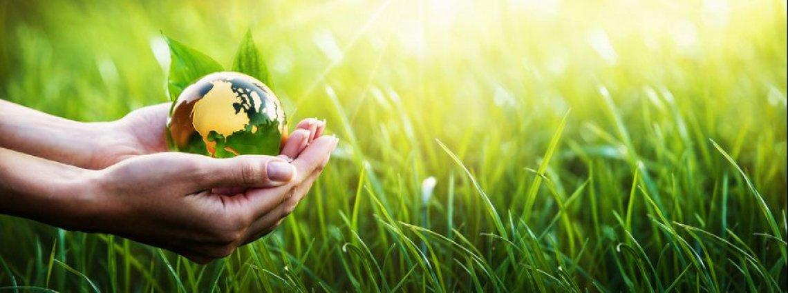 Oltre il valore commerciale, la sostenibilità ha un prezzo che non si paga in denaro