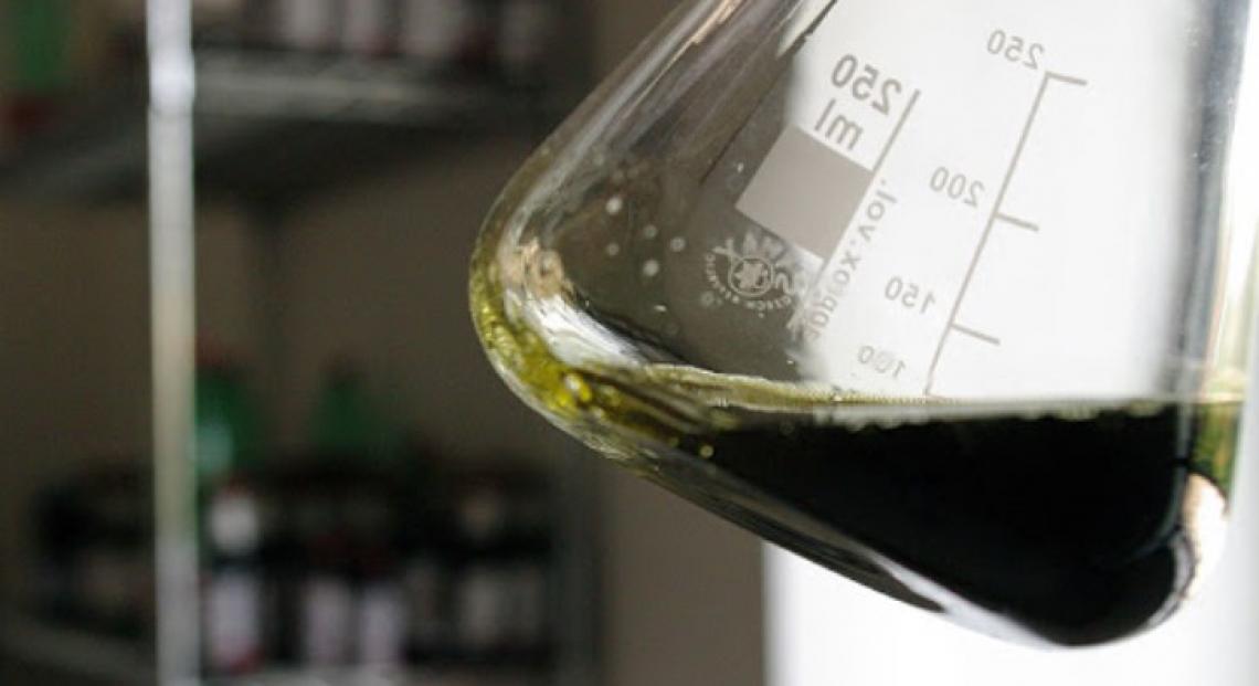 Eurolivepomace, la Federazione europea dell'olio di sansa, sarà guidata da un italiano