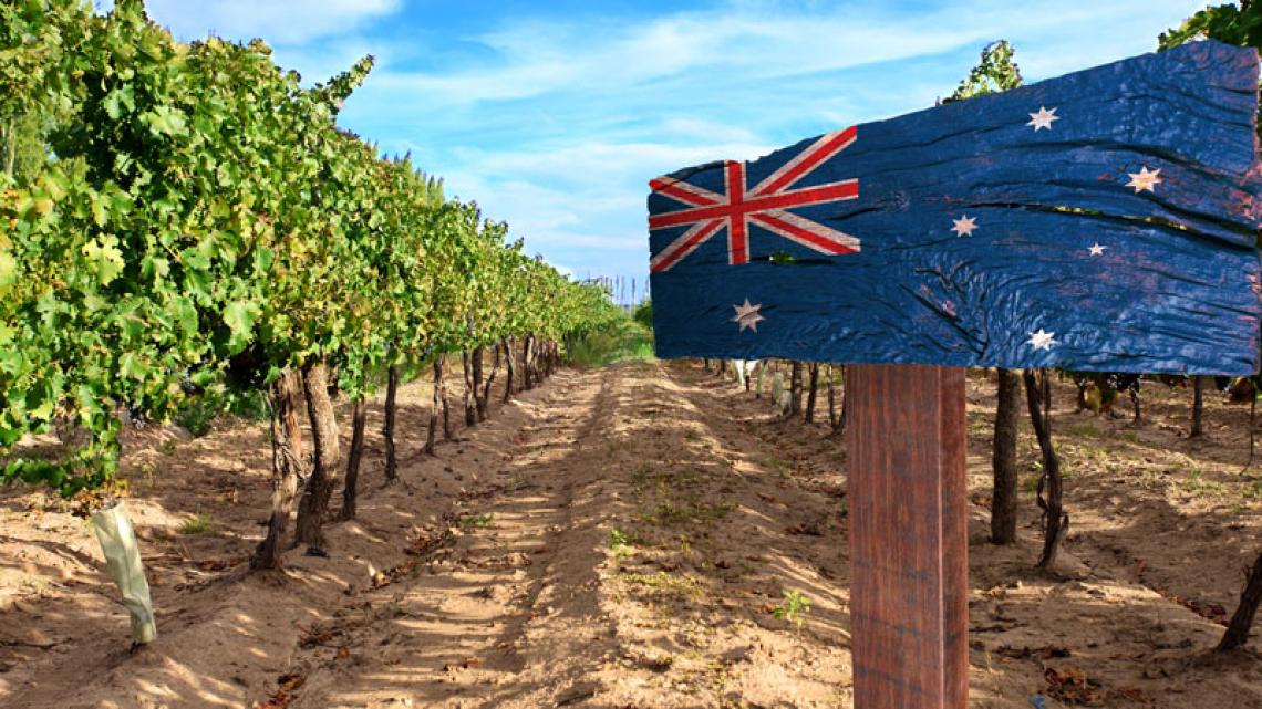 Via libera senza dazi al vino australiano nel Regno Unito