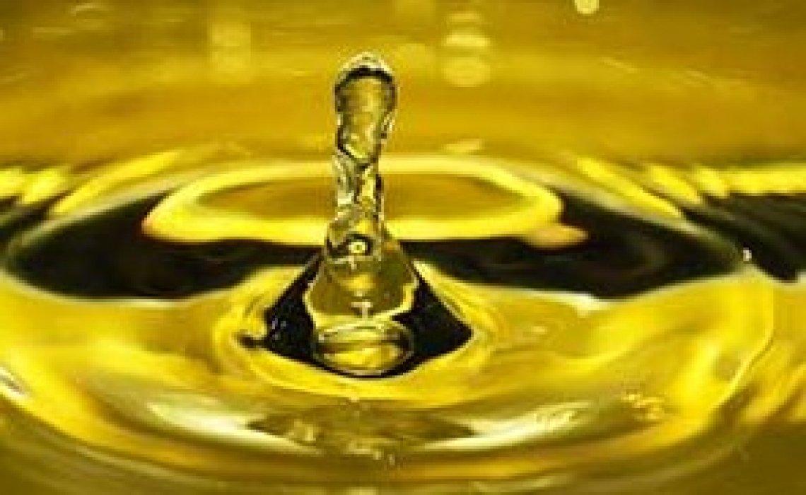 La Puglia è la regina dei frantoiani: Oro di Rufolo è il Mastro d'Oro 2020