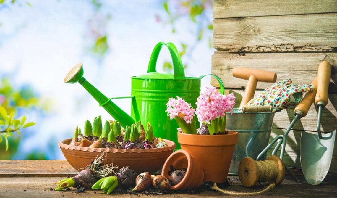 Il pollice verde degli italiani: cresce la voglia di orto e giardino