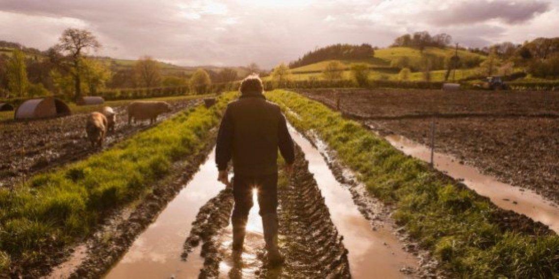Sono agricoltore, non servo delle banche, delle multinazionali, della Grande Distribuzione