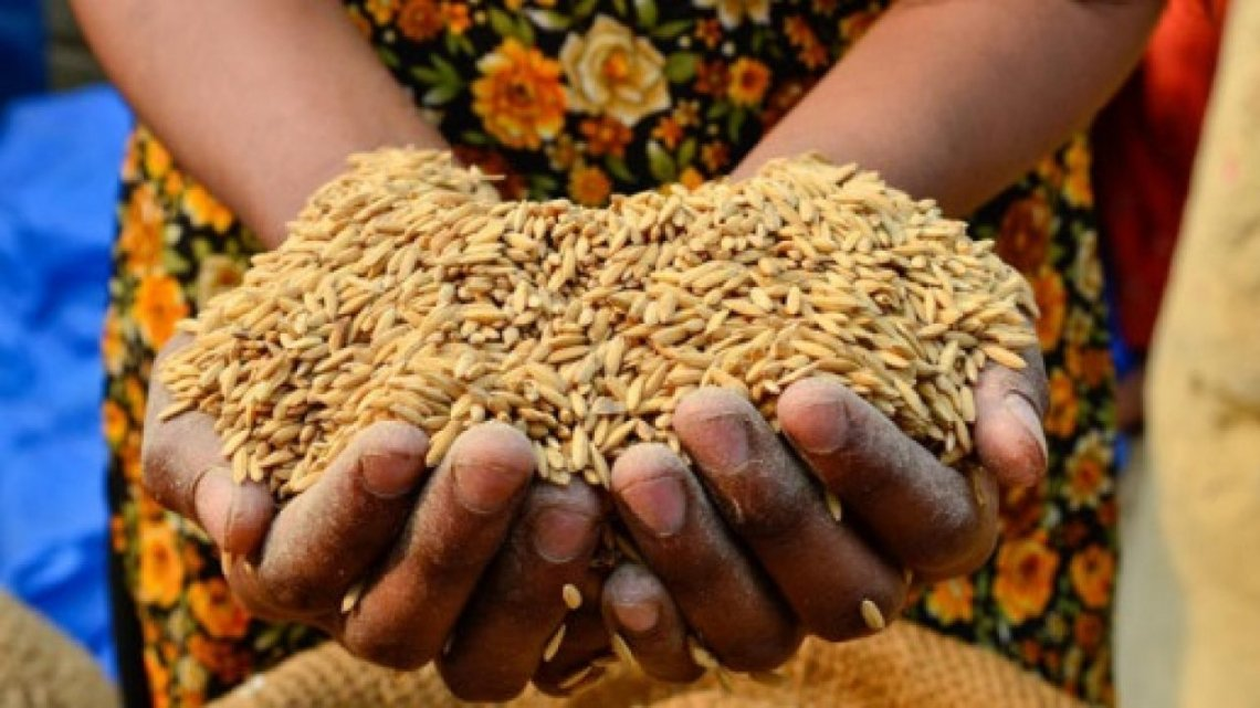 L'impatto del Covid-19 sulla salute delle persone e sui sistemi alimentari