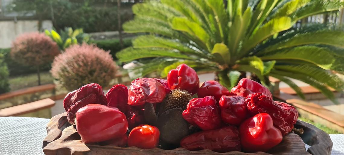 Slow Food celebra i 20 anni dei Presìdi, un successo per la biodiversità italiana