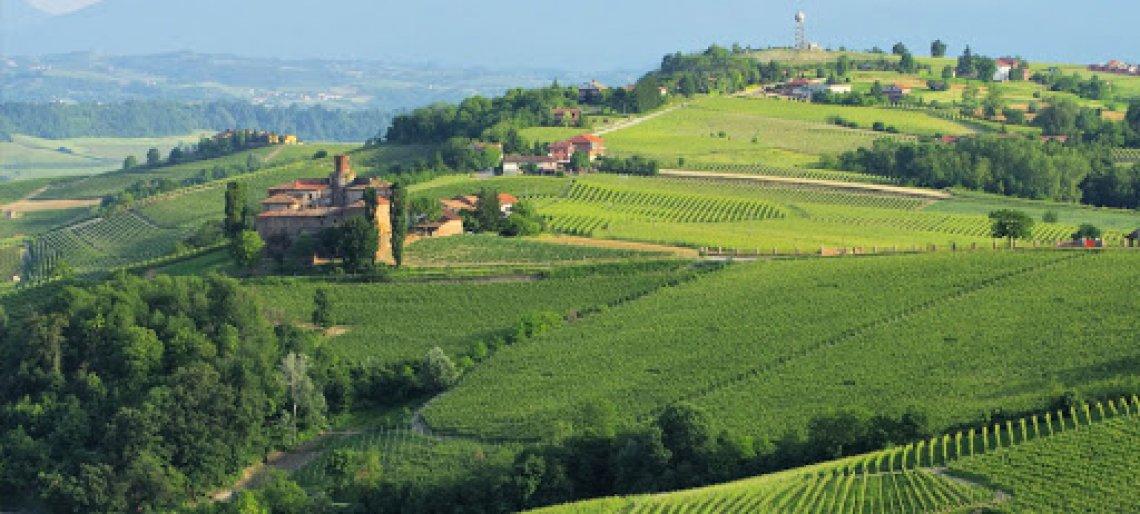 Nelle Langhe la Città del Vino 2021: è Barolo l'icona vitivinicola del prossimo anno