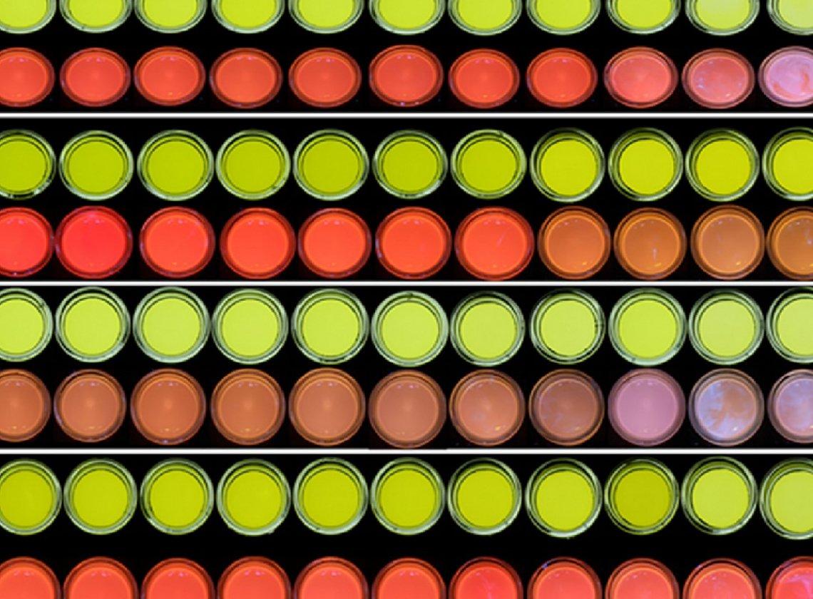 La diversa stabilità ossidativa degli oli extra vergini di oliva monovarietali italiani misurata tramite LED