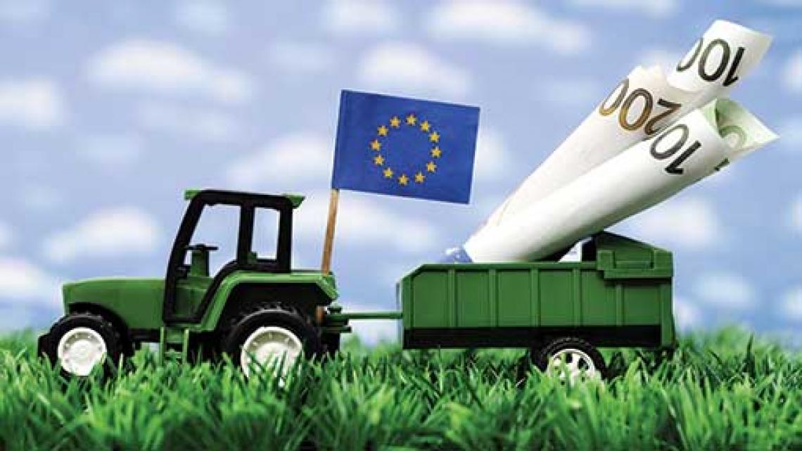 Nella futura Pac europea più competitività e tutela ambientale