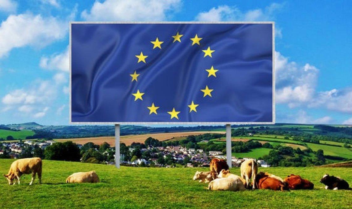 L'impatto positivo degli accordi commerciali sui settori agroalimentari