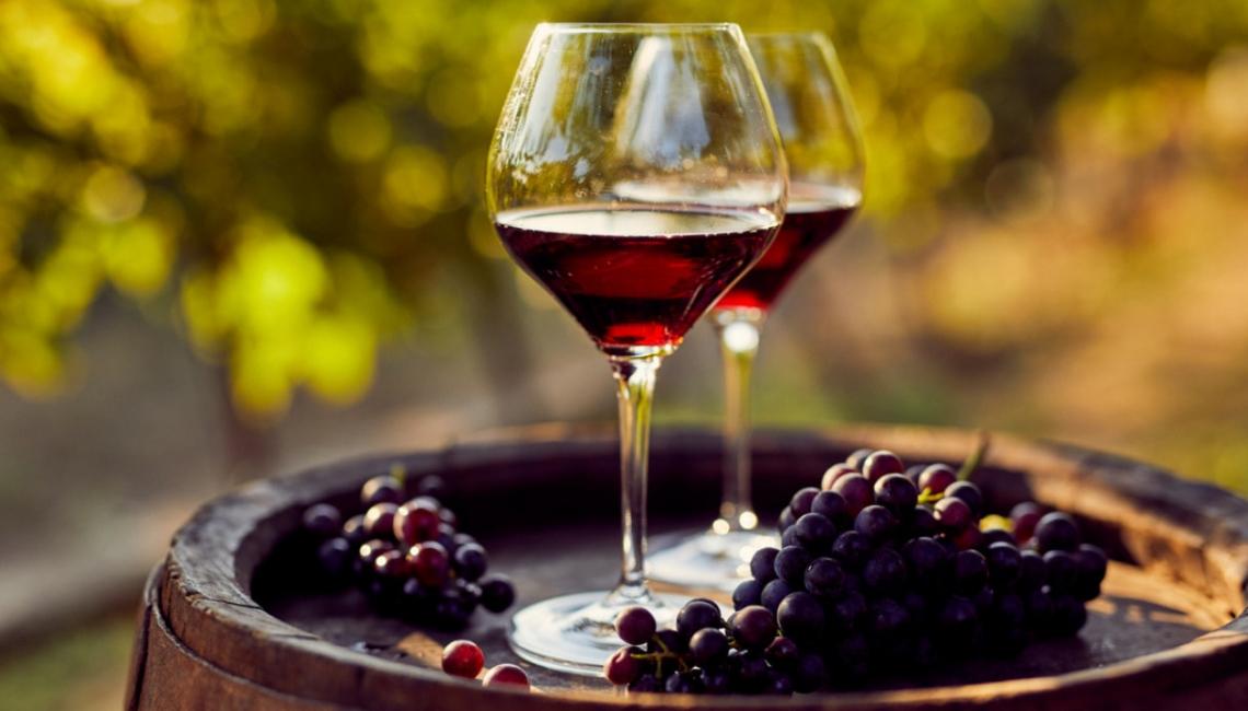 Progetto pilota per una nuova produzione vitivinicola delle Marche